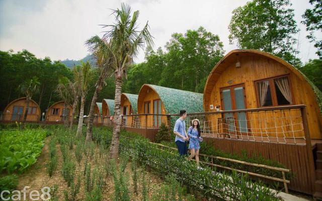 Tất tần tật các câu hỏi về farmstay: Farmstay là gì, khác gì Homestay? Vì sao nên kinh doanh farmstay tại Việt Nam?